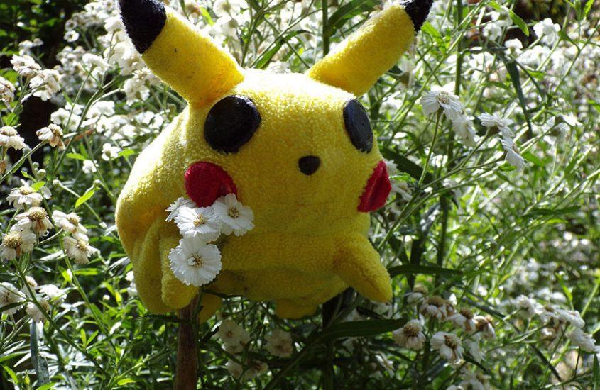 Pokémon go! B2C schnapp Sie dir!