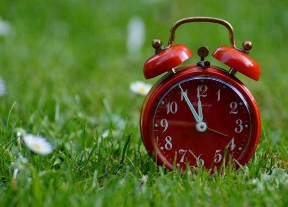 Passend zum Blogbeitrag »Zeit ist Geld« von phase grün, ist ein knall roter Wecker dessen Zeiger 5 Minuten vor 12 Uhr steht. Der Wecker steht auf einer Wiesen mit Kamillenblumen.