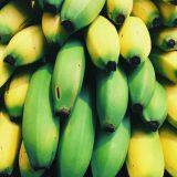 Das Bild zeigt eine Detailaufnahme von einem Haufen Bananen. Die Farben Gelb und Grün laufen teilweise ineinander über.
