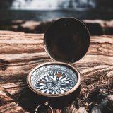 Das Bild zeigt einen aufgeklappten Kompass, der auf einem umgekippten Baumstamm liegt.