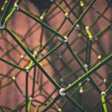 Amazon und Co. machen es vor - Marketing mit dem IoT phase grün