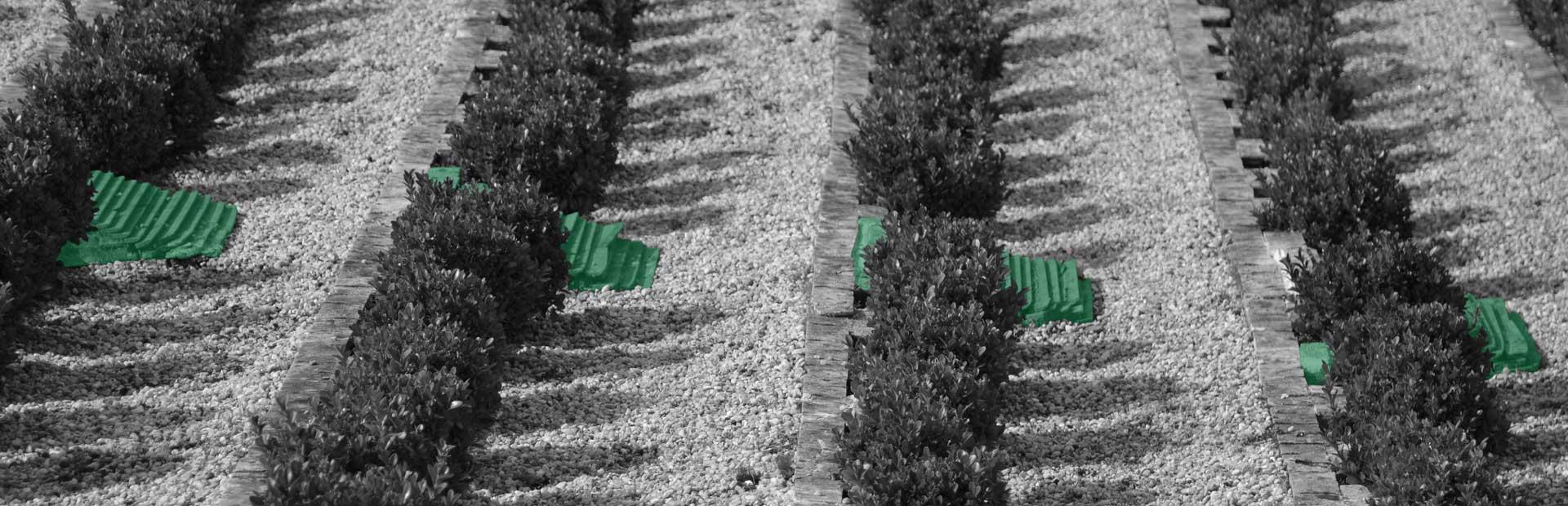 Ein großer Garten, der in mehreren Abschnitten durch Steine getrennt wird. Entlang der Steine erstreckt sich jeweils ein Busch, die jeweils von einer Steintreppe unterbrochen wird. Der Boden besteht aus einer Kieselsteinfläche.