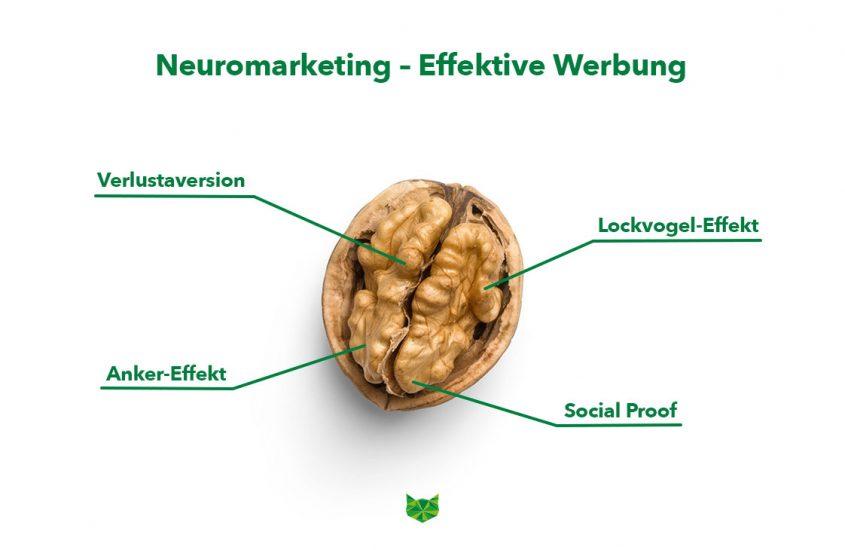 Neuromarketing: Effektive Werbung durch die Psychologie