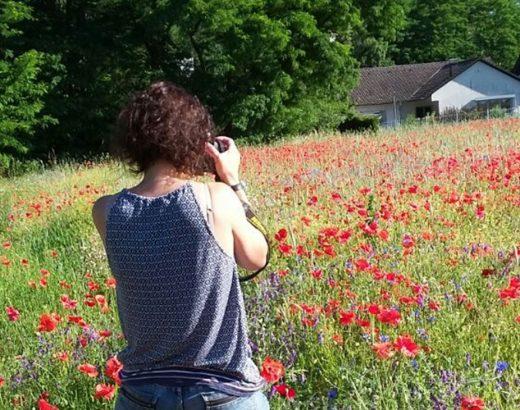 Eine große Blumenwiese mit roten und lila Blumen erstreckt sich im Bild. Am rechten Horizont sind zwei Häuser zu sehen und auf der linken Seite beginnt der Wald. Im Vordergrund ist die Inhaberin von phase grün von Hinten zu sehen, die die Kolumne zum Weltfrauentag geschrieben hat.