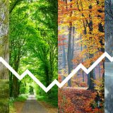 Eine Preiskurve vor vier Bildern von jeweils einer Jahreszeit